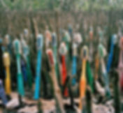 pastic toothbrush waste and plastic pollution