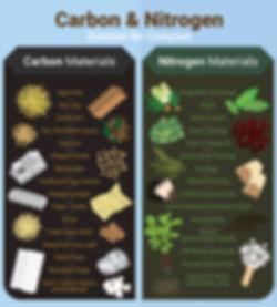 carbon-nitrogen.jpg
