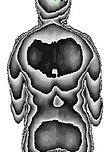 Rückenscan_2.PNG