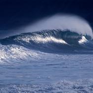 Relatório base para a elaboração do Programa Brasileiro de Reservas de Surf