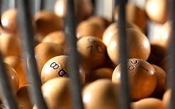 14-bingo.jpg