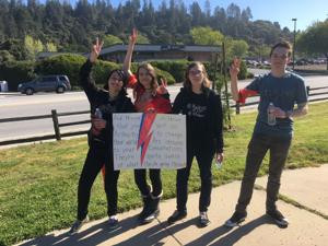 SLV hosts walkout against school shootings.