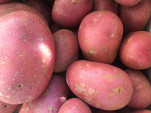 Red Potatoes (Rooster)
