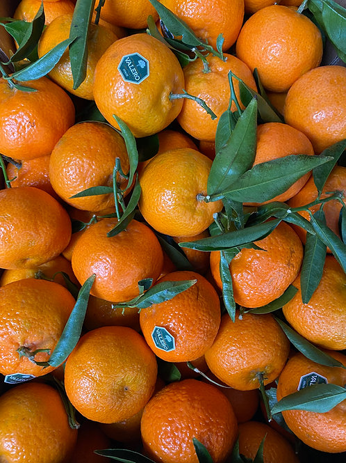 Leafy Clementines (Large)