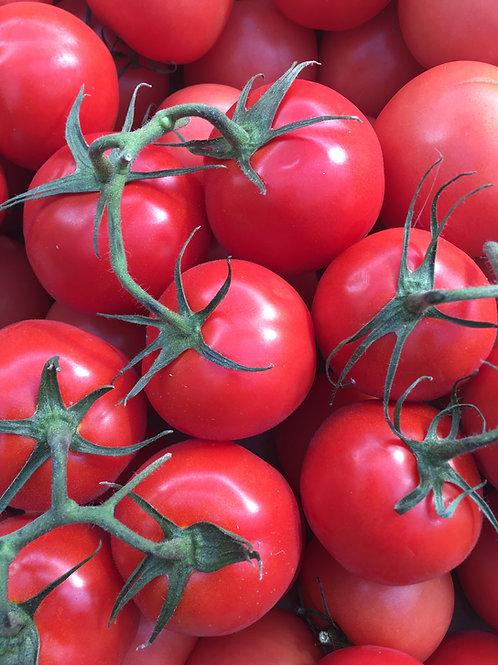 Vine Tomatoes - Large