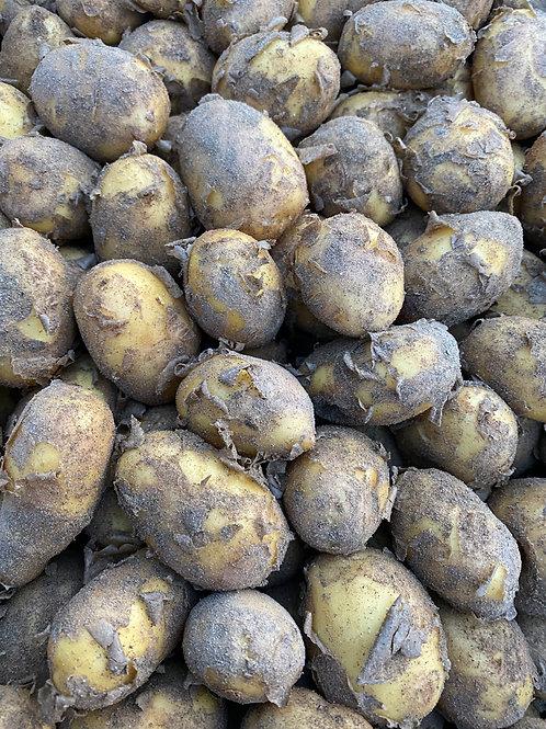 Italian New potatoes kg