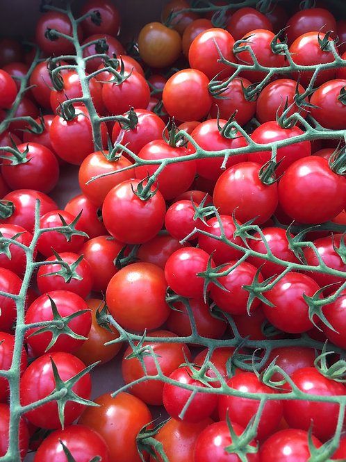 Vine Tomatoes - Small