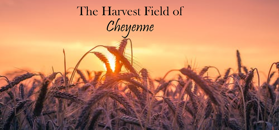 Harvest Field.png