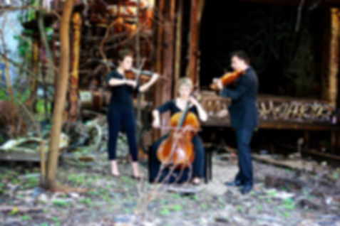 Atlanta Wedding String Quartet, Wedding Music Atlanta