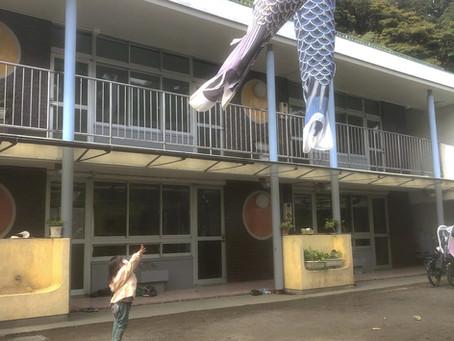 鯉のぼりが空をふわふわ泳いでる!