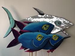 Amok2014Fishschool