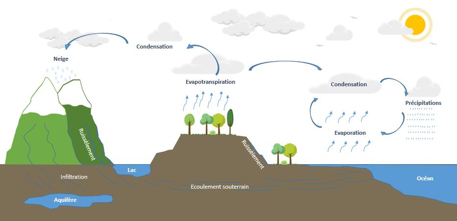 Le grand cycle de l'eau