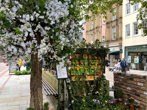 The Manchester Flower Show: Roundup