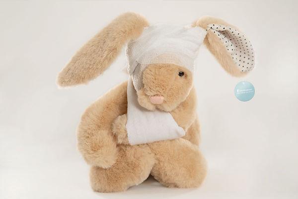 UNC_Bunny.jpg