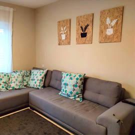 סט עציצים בסלון הלקוחה שלנו