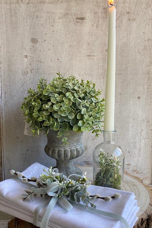 Eucalyptus Urn