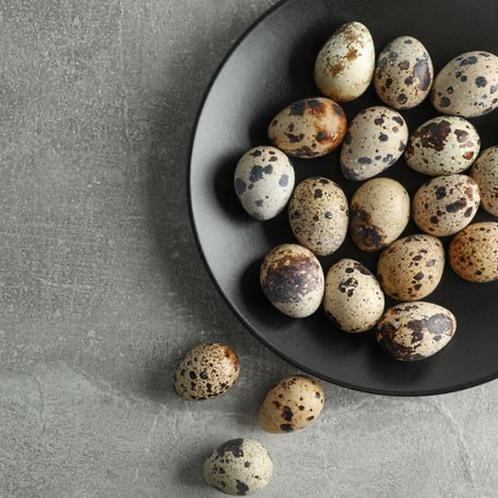 Decorative Quails Eggs
