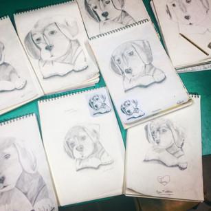 perros a lápiz -curso infantil