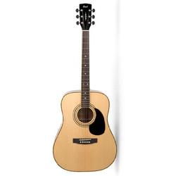 1-dan-guitar-cort-ad880
