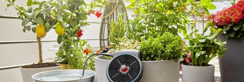 Solution d'arrosage automatique solaire