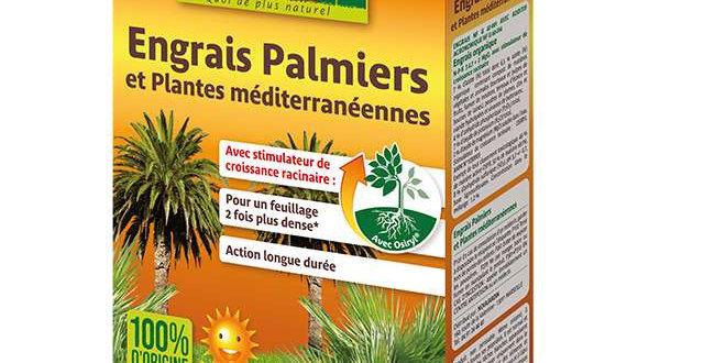 Engrais Palmiers 'Solabiol' 1,5Kg