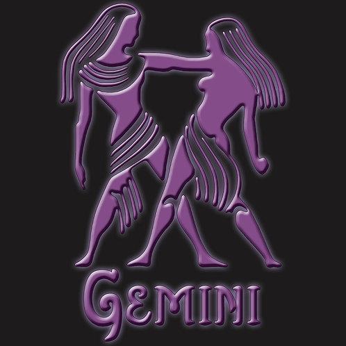 Gemini Twins Symbol Zodiac Shirt