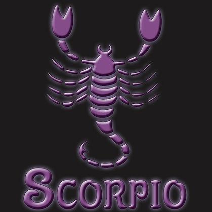 Scorpio Scorpion Zodiac Symbol Shirt