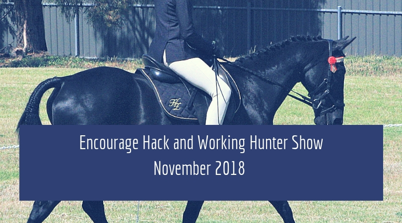 Hack and Working Hunter Show