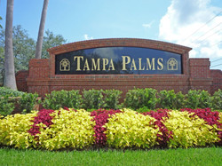 Tampa-Palms-in-New-Tampa-Florida-1024x768