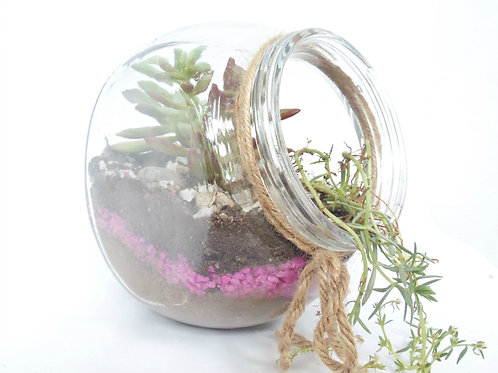 Terrarios en Jars