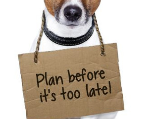 Part III Prepare your Pet For an Emergency:  Evacuation Plan