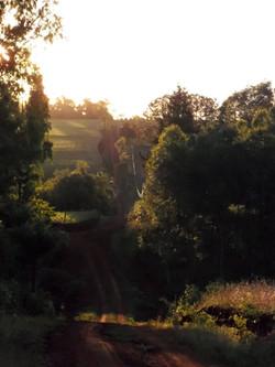 Golden hour outside of Natalio