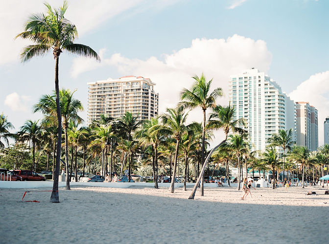 Photo of a beach, hotels in the background, and palm trees