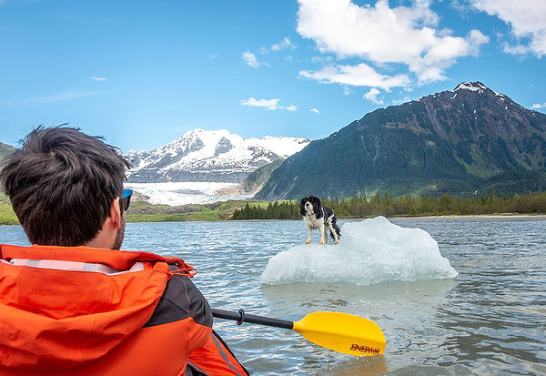 Loud and Slow - Kayaking, Glaciers and Dogs!