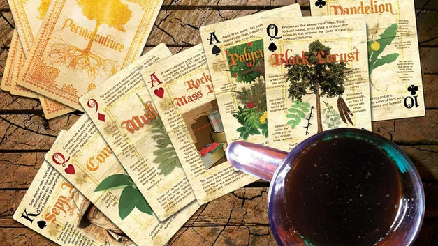 12 Decks of Permaculture Playing Cards