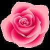 rose05.png