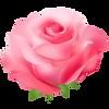 rose03.png