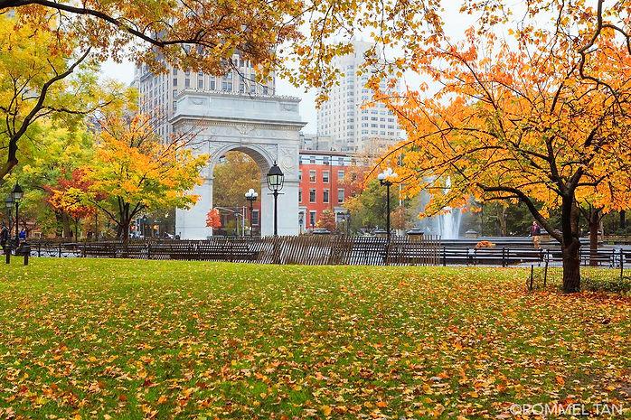 Washington Square Park in Autumn.jpg