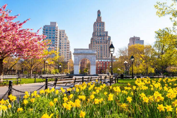 Washington Square Park in Spring 2.jpg