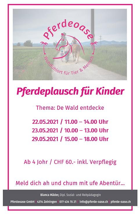 Pferdeplausch_Wald entdecken_18.05.21.PN