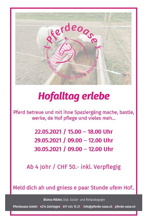 Pferdeplausch_Hofalltag_18.05.21.PNG