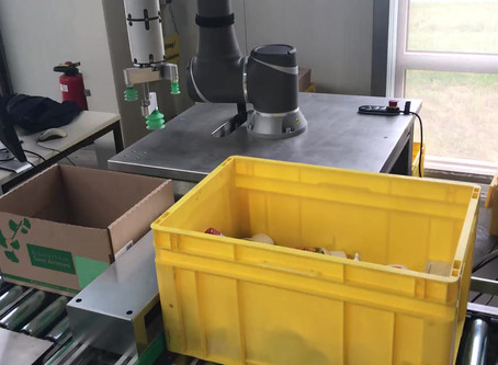 Griff in die Kiste mit unbekannten Teilen