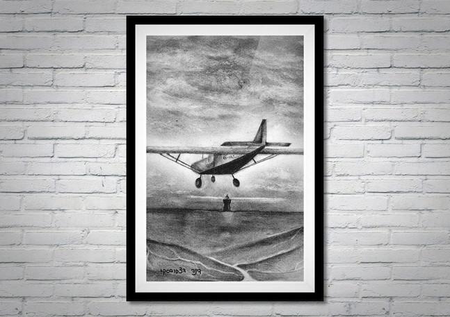 דינה דצקובסקי | רישום בהזמנה אישית | מטוס