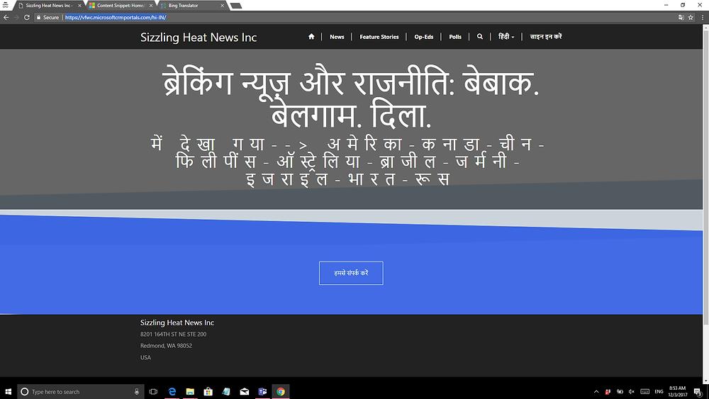 Sample D365 Portal Screen Shot
