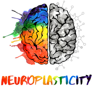hyperbaric oxygen therapy for neuroplasticity