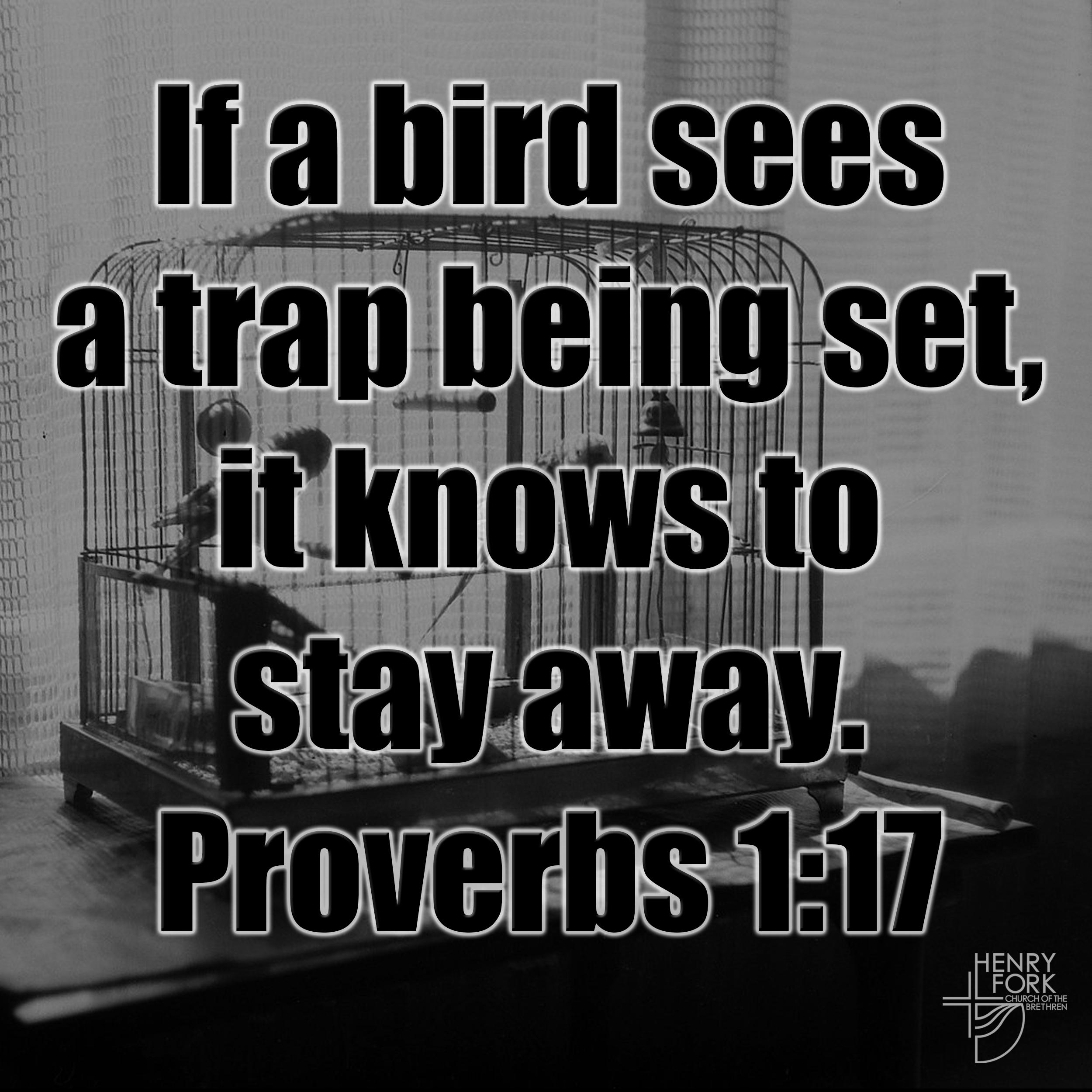 Proverbs 1:17