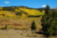Mitchell-Ranch.jpg