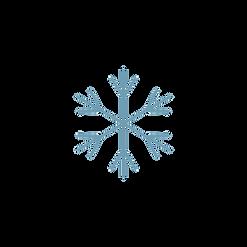 noun_Snowflake_1403294_6f9eb4.png