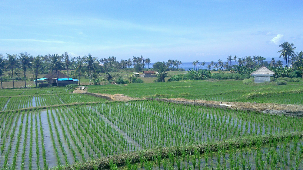 Bali - Jl. Prof. Dr. Ida Bagus Mantra