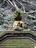 Ubud, a cidade balinesa dos artistas e dos macaquinhos danados